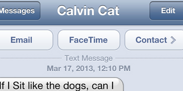 Text from cat: Me, Too