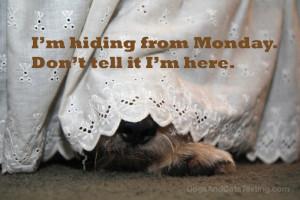 Tucker hiding from Monday